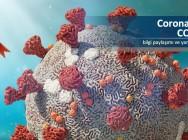Corona (Korona) Virüsü salgını Dünyamız Tehlikede